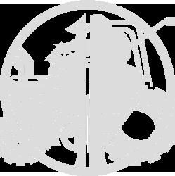 Forêt et bois